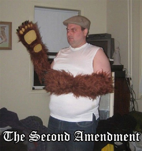 4381694-the-right-to-bear-arms.jpg